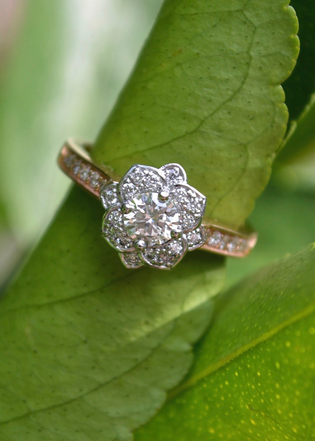 Flower ring in white and rose gold